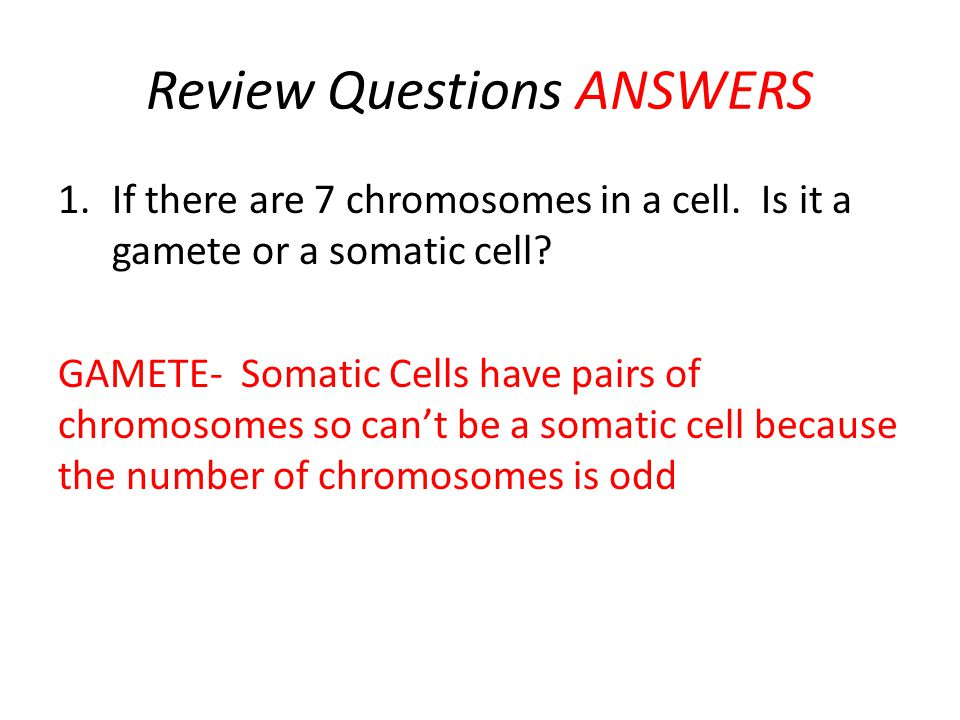 Review Questions ANSWERS 1.If there are 7 chromosomes in a cell.