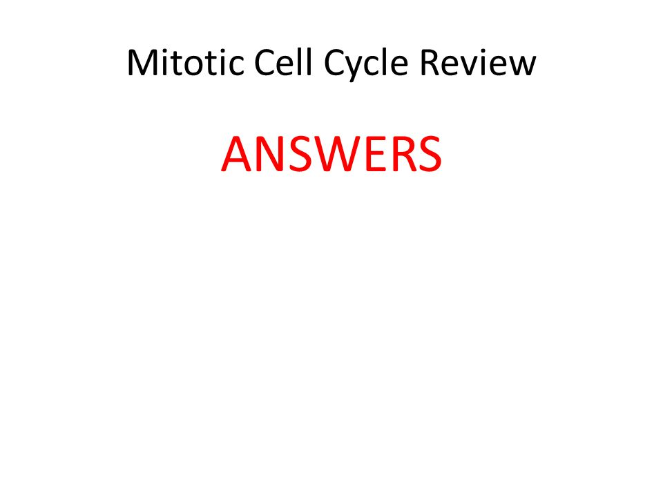 Mitotic Cell Cycle Review ANSWERS