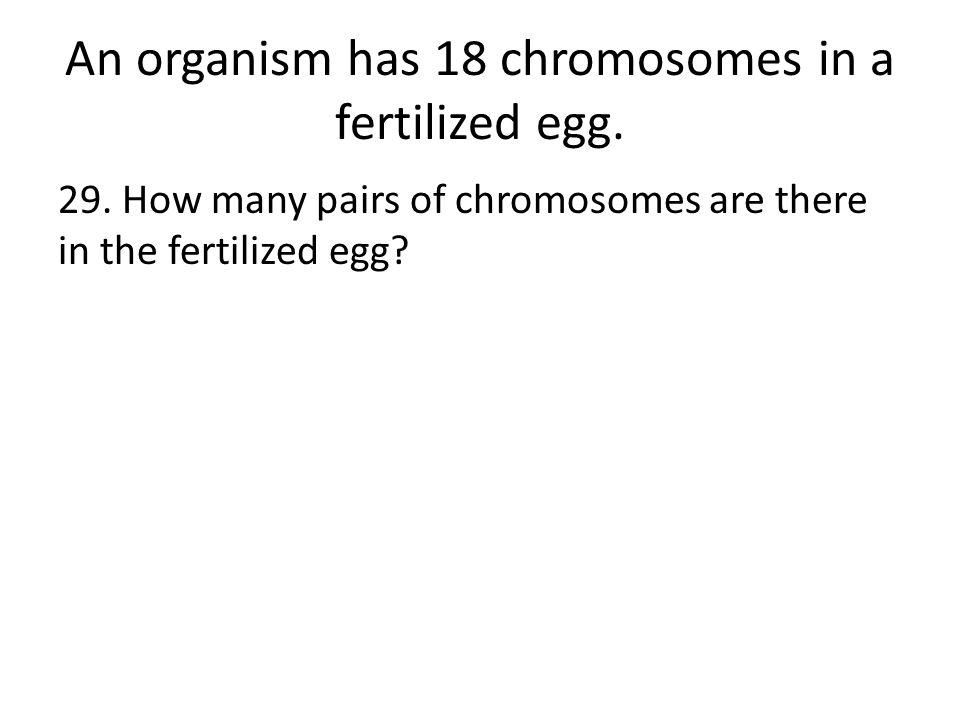 An organism has 18 chromosomes in a fertilized egg.