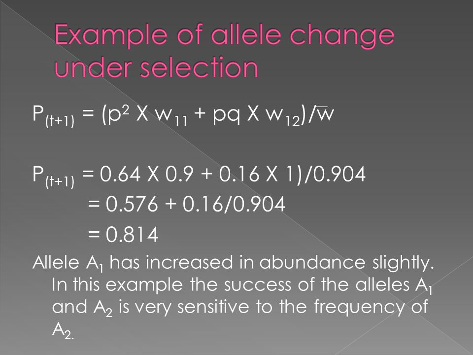 P (t+1) = (p 2 X w 11 + pq X w 12 )/w P (t+1) = 0.64 X 0.9 + 0.16 X 1)/0.904 = 0.576 + 0.16/0.904 = 0.814 Allele A 1 has increased in abundance slight
