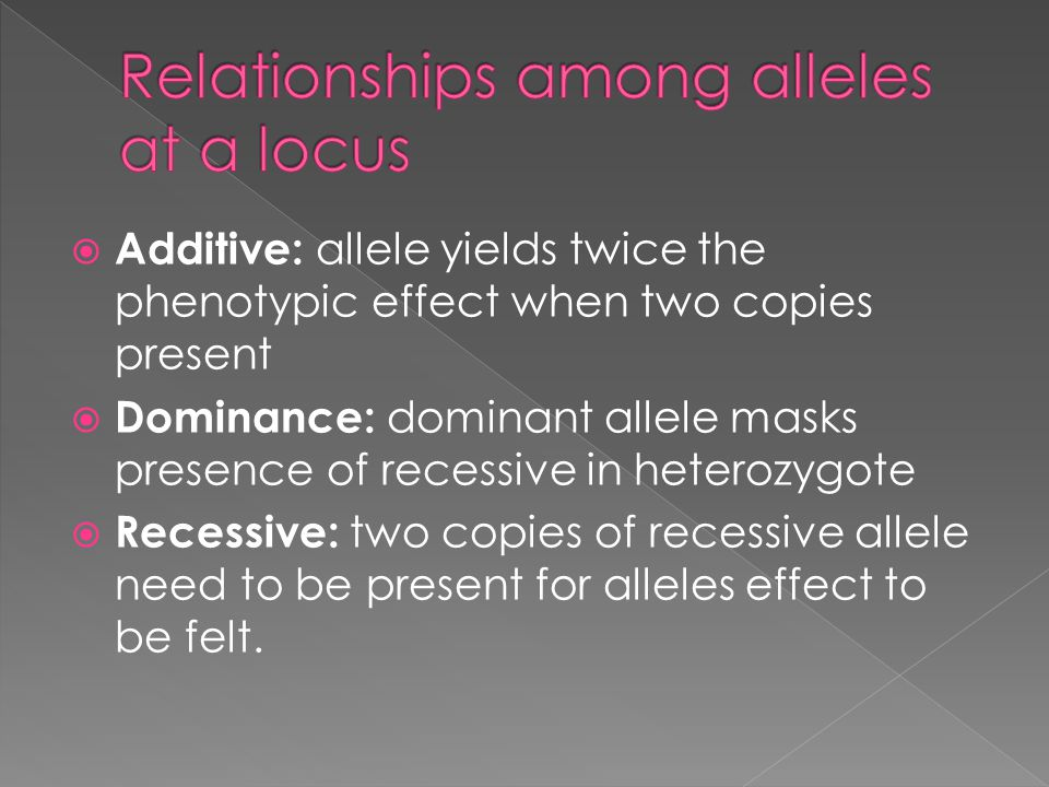  Additive: allele yields twice the phenotypic effect when two copies present  Dominance: dominant allele masks presence of recessive in heterozygote  Recessive: two copies of recessive allele need to be present for alleles effect to be felt.