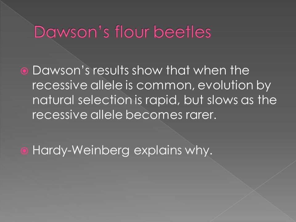  Dawson's results show that when the recessive allele is common, evolution by natural selection is rapid, but slows as the recessive allele becomes rarer.