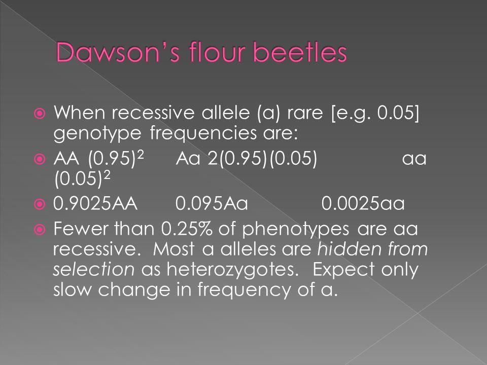  When recessive allele (a) rare [e.g. 0.05] genotype frequencies are:  AA (0.95) 2 Aa 2(0.95)(0.05) aa (0.05) 2  0.9025AA 0.095Aa 0.0025aa  Fewer