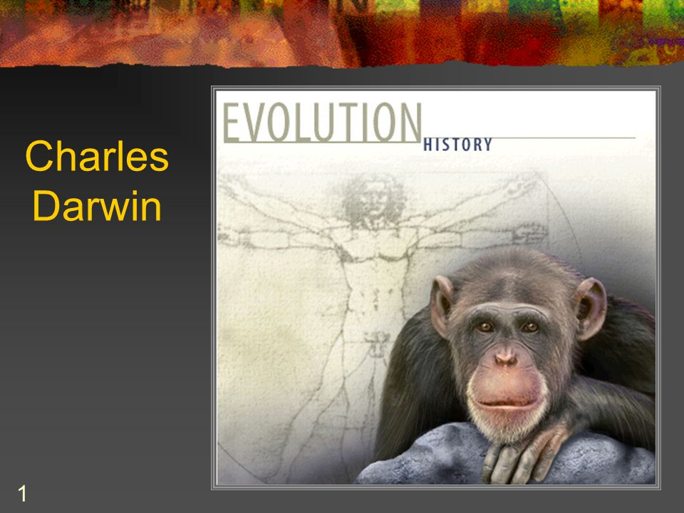 DARWIN'S OBSERVATIONS and DEDUCTIONS 22