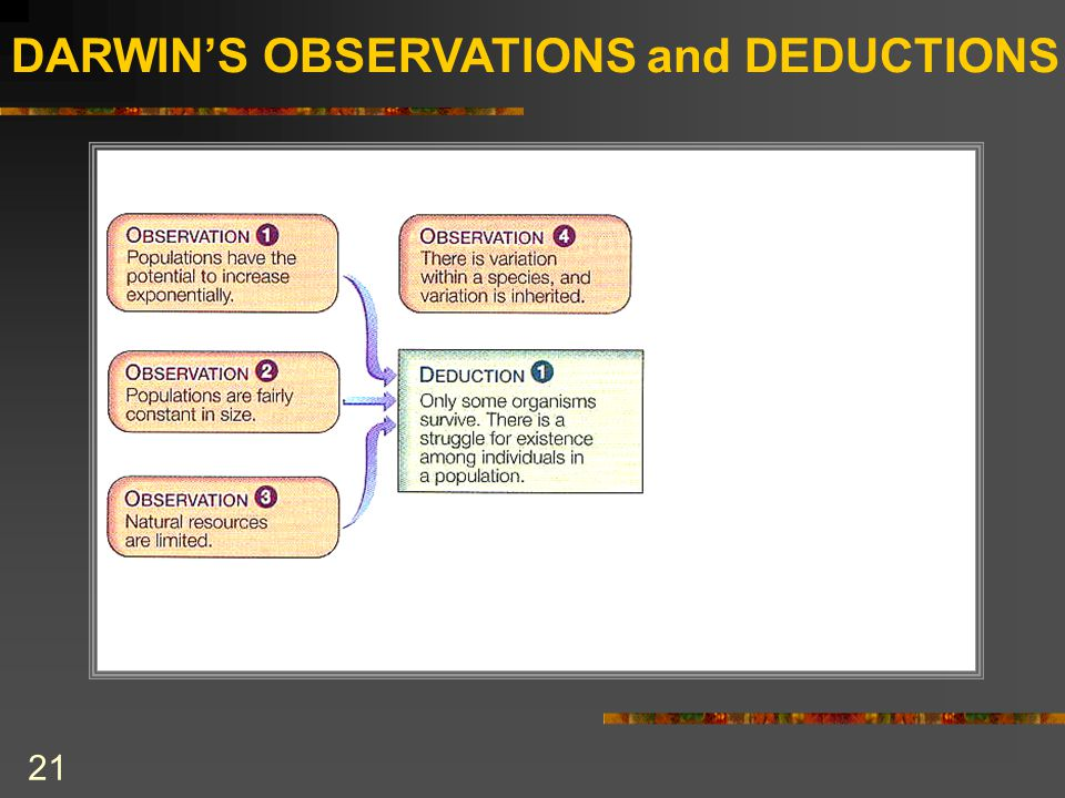 DARWIN'S OBSERVATIONS and DEDUCTIONS 21