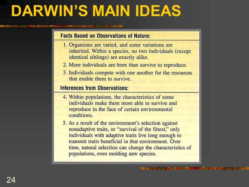 DARWIN'S MAIN IDEAS 24