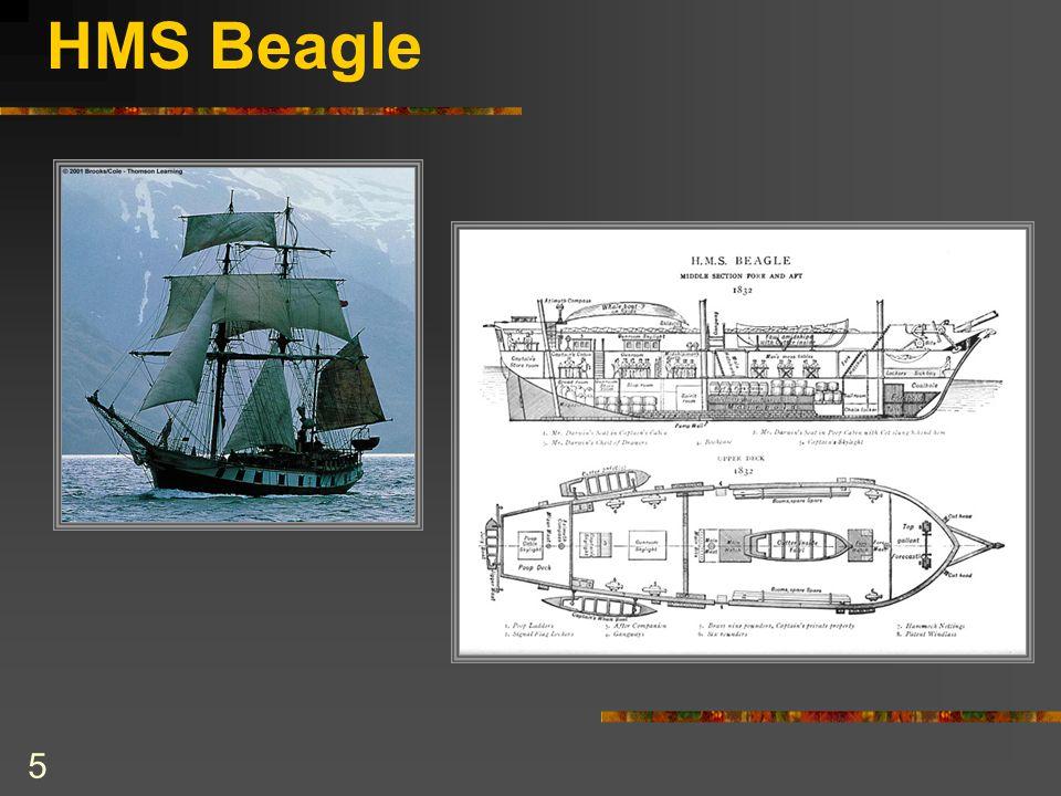 HMS Beagle 5