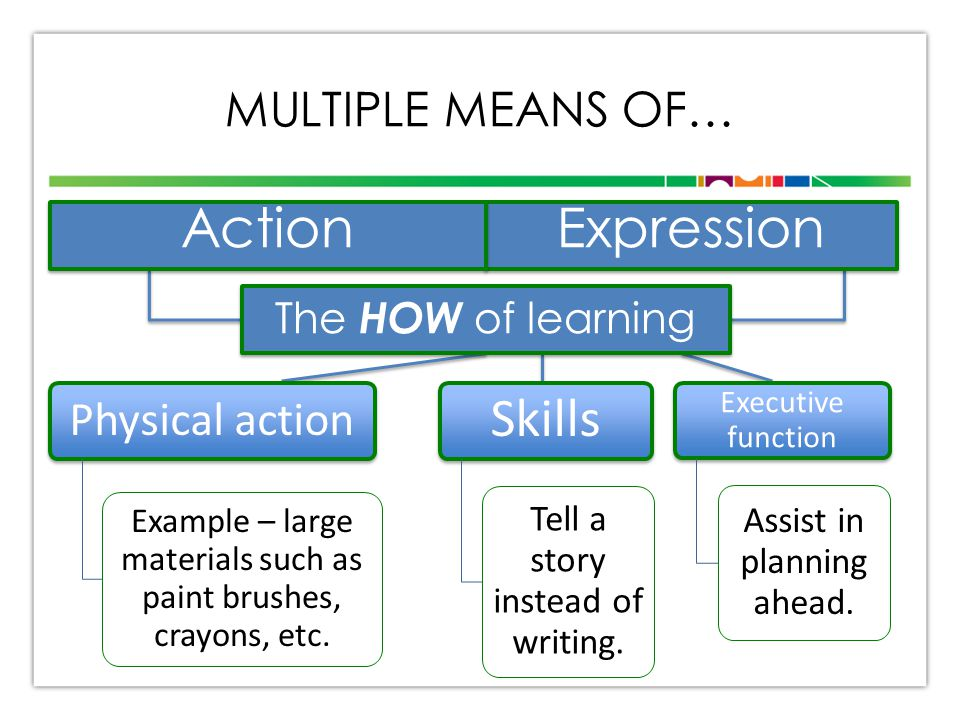 MULTIPLE MEANS OF… Physical action Example – large materials such as paint brushes, crayons, etc. Expression Skills Tell a story instead of writing. E