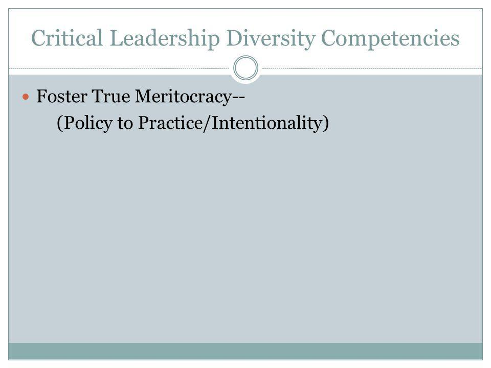 Critical Leadership Diversity Competencies Foster True Meritocracy-- (Policy to Practice/Intentionality)