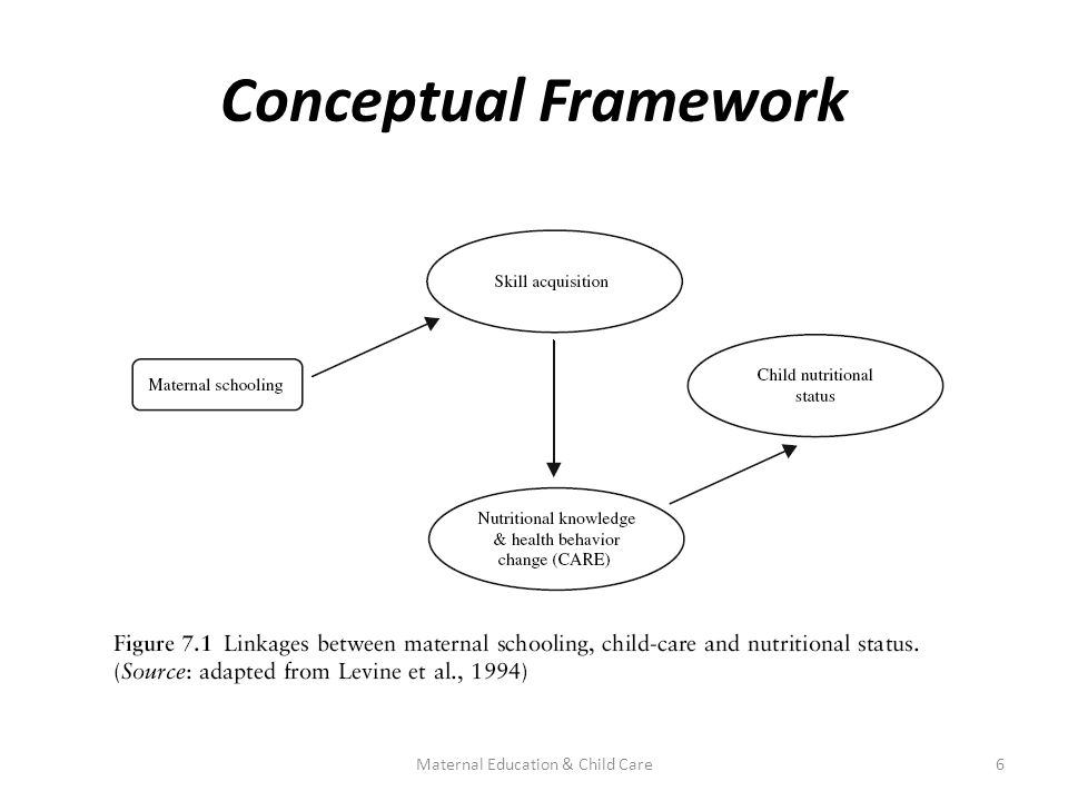 Conceptual Framework 6Maternal Education & Child Care