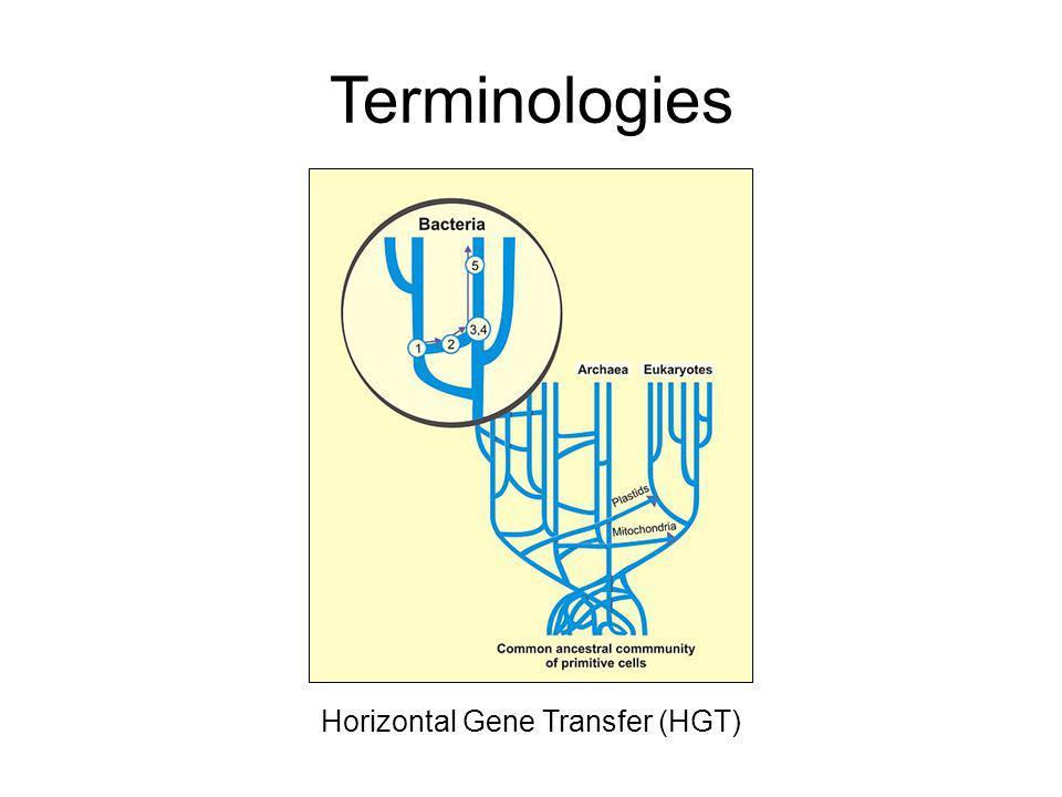 Terminologies Horizontal Gene Transfer (HGT)