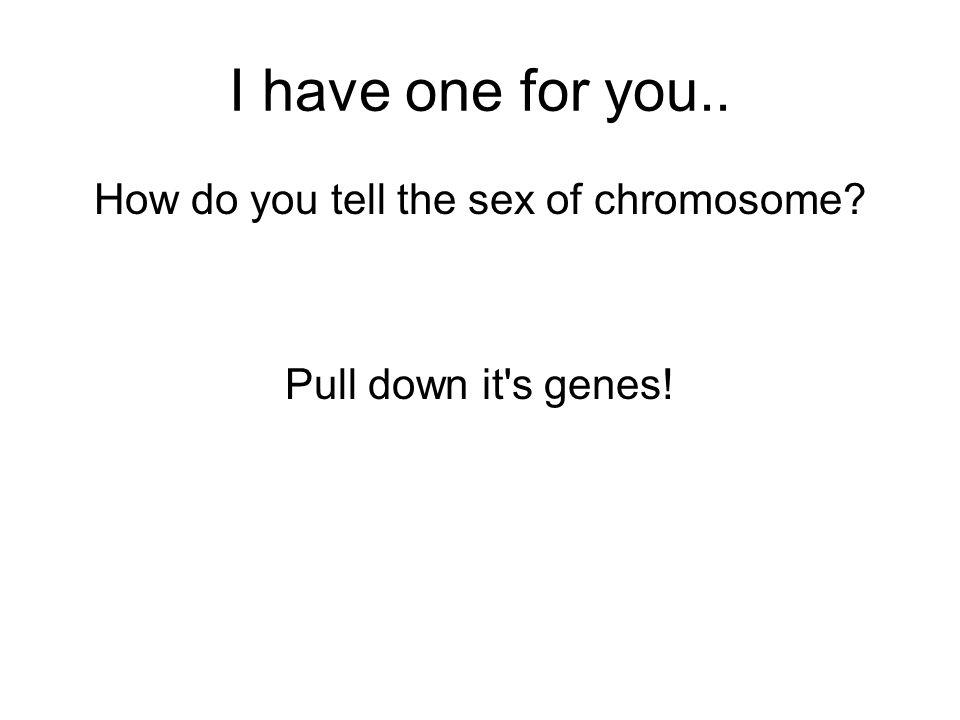 I have one for you.. How do you tell the sex of chromosome Pull down it s genes!