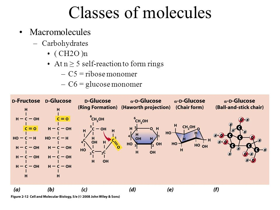 Classes of molecules Macromolecules –Carbohydrates ( CH2O )n At n ≥ 5 self-reaction to form rings –C5 = ribose monomer –C6 = glucose monomer