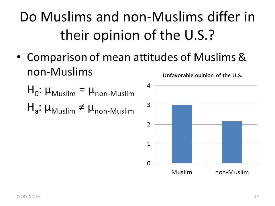 Do Muslims and non-Muslims differ in their opinion of the U.S..