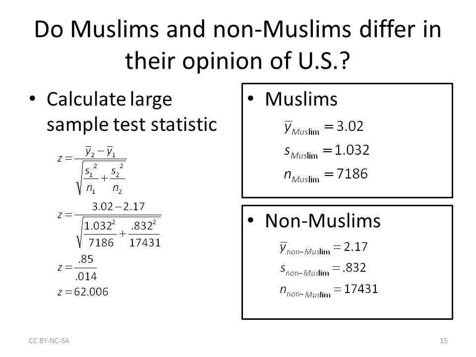 Do Muslims and non-Muslims differ in their opinion of U.S..