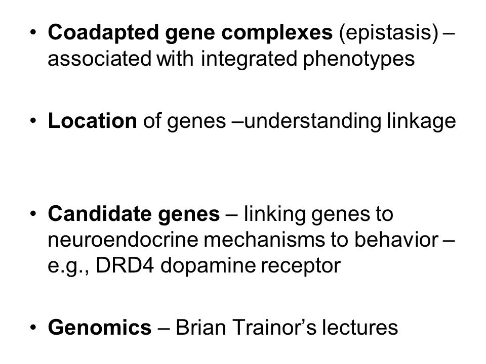 Quantitative genetics Does not study genes themselves, but relies on statistical similarity of phenotypes in related individuals Suitable for continuous traits controlled by many genes – e.g., behavior Key books: Falconer & Mackay 1996, Lynch & Walsh 1998 Phenotypic value (P) = genetic value (G) + environmental effect (E) + interaction (G x E) G x E is genetic variation in response to the environment Genetic value (G) = additive (A) + non-additive – including dominance, epistasis