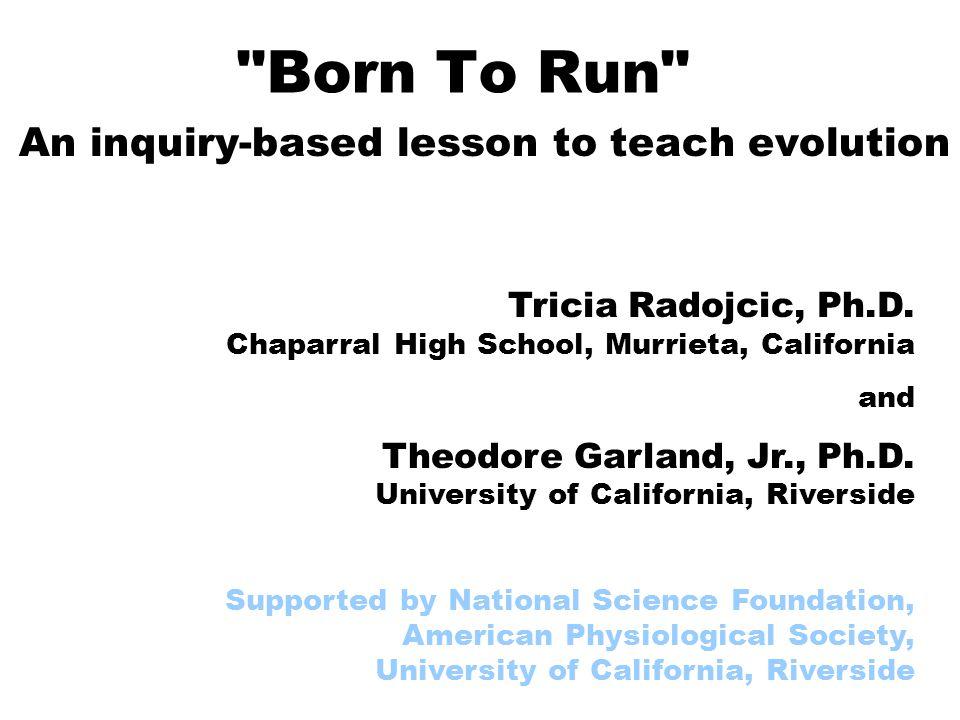 2 Born To Run http://www.indiana.edu/~ensiweb/lessons/BornToRun.html Radojcic, T., and T.