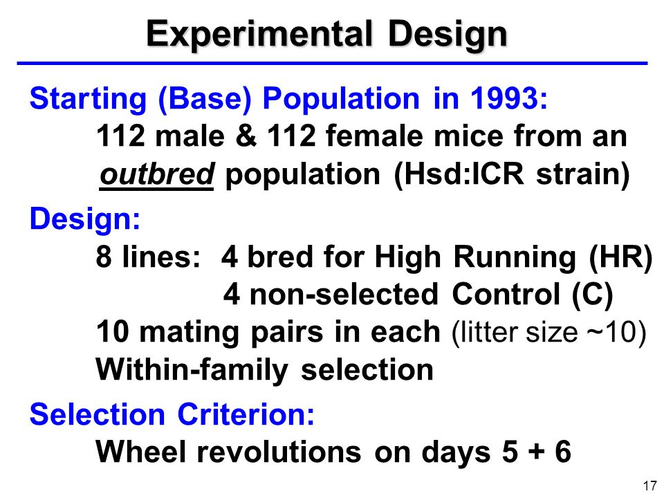 17 Star ting (Base) Population in 1993: 112 male & 112 female mice from an outbred population (Hsd:ICR strain) Design: 8 lines: 4 bred for High Runnin