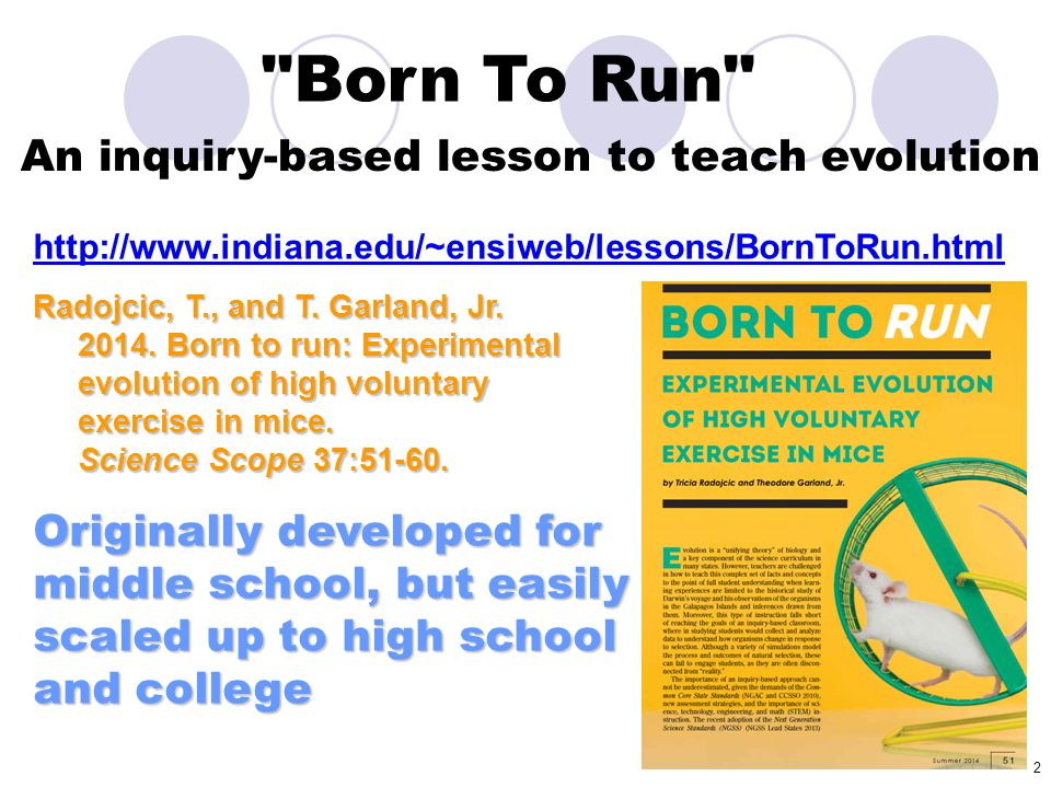 3 Born To Run We will post this presentation here: http://www.biology.ucr.edu/people/faculty/Garla nd/Artificial_Selection_Lab_2014_NSTA_6.pptx Feel free to use it, edit it, share it!
