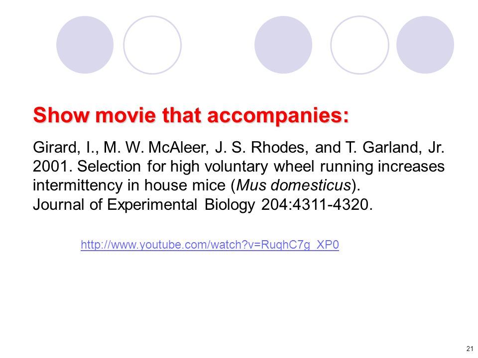 21 Show movie that accompanies: Girard, I., M. W. McAleer, J. S. Rhodes, and T. Garland, Jr. 2001. Selection for high voluntary wheel running increase