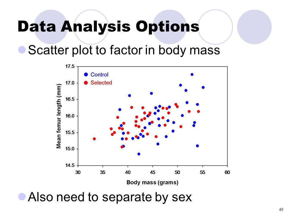 49 Scatter plot to factor in body mass Also need to separate by sex Data Analysis Options