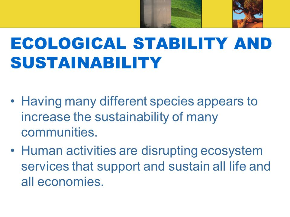ECOLOGICAL STABILITY AND SUSTAINABILITY Having many different species appears to increase the sustainability of many communities.