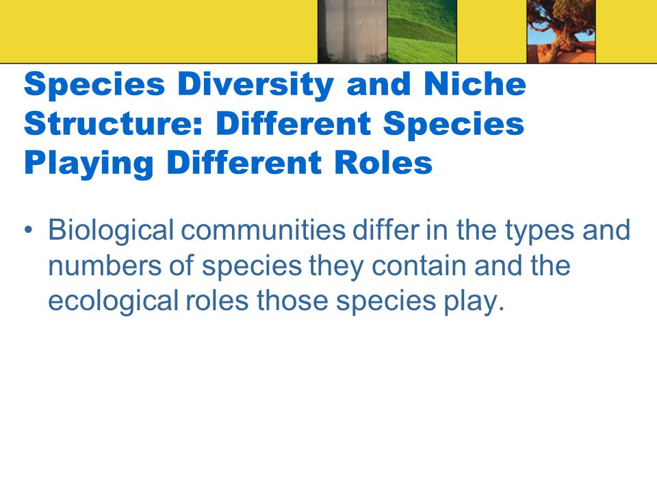 Species Diversity and Niche Structure: Different Species Playing Different Roles Biological communities differ in the types and numbers of species they contain and the ecological roles those species play.