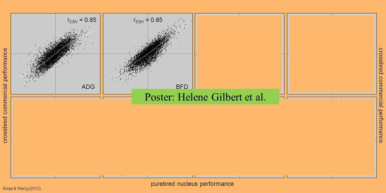 ADG BFD DFI RFI crossbred commercial performance r EBV = 0.55 r EBV = 0.54 r EBV = –0.06 r EBV = 0.06 r EBV = 0.85 r EBV = 0.78 r EBV = 0.85 r EBV = 0.80 crossbred commercial performance purebred nucleus performance Knap & Wang (2012) Poster: Helene Gilbert et al.