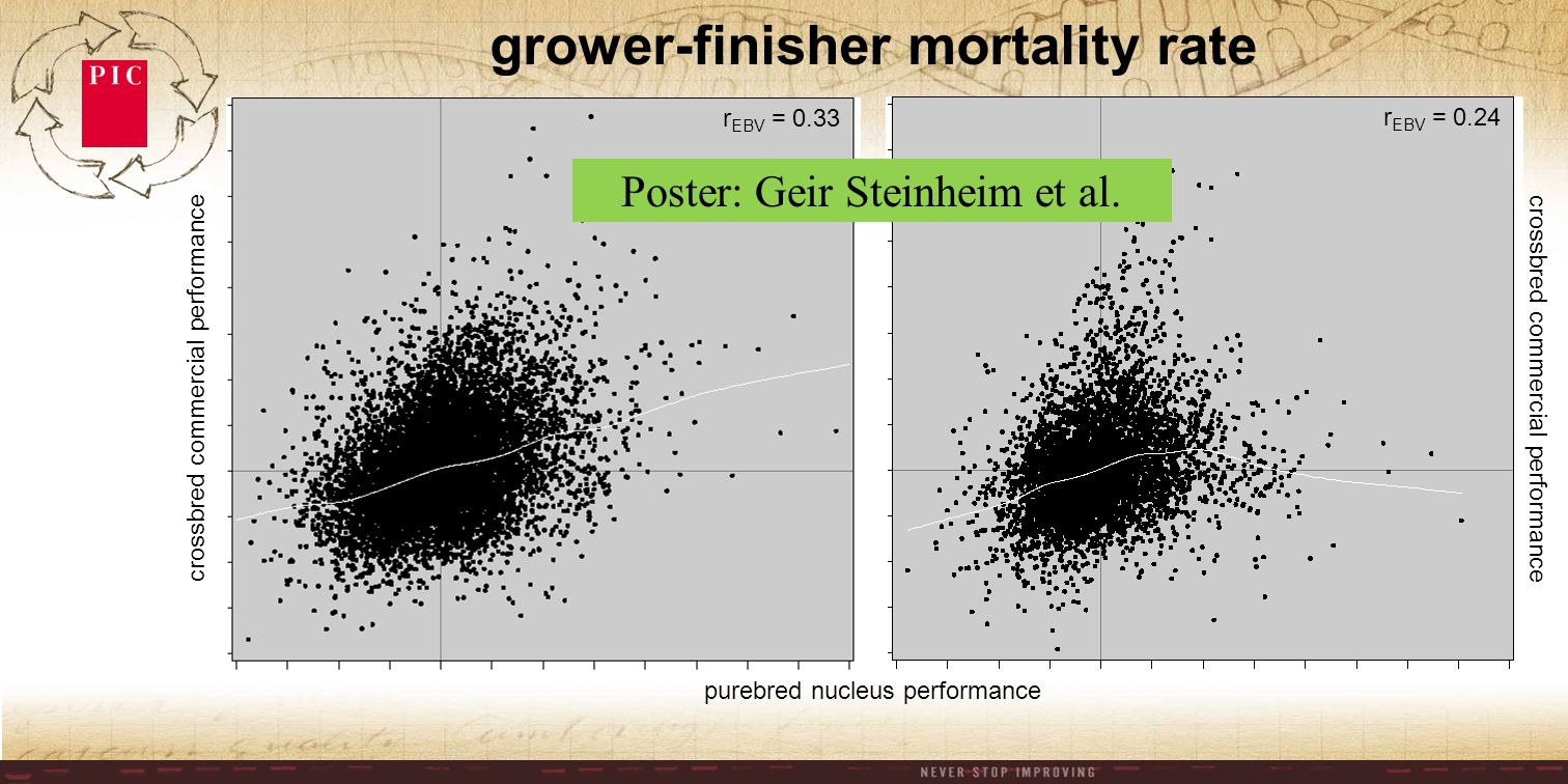 crossbred commercial performance purebred nucleus performance crossbred commercial performance r EBV = 0.33 r EBV = 0.24 grower-finisher mortality rate Poster: Geir Steinheim et al.