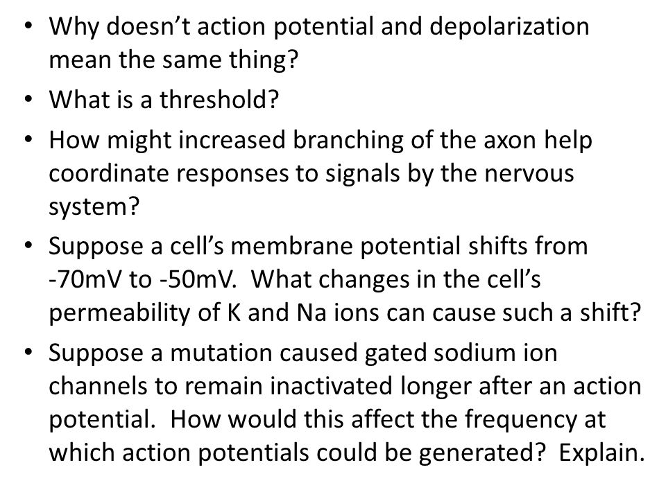 Why doesn't action potential and depolarization mean the same thing? What is a threshold? How might increased branching of the axon help coordinate re