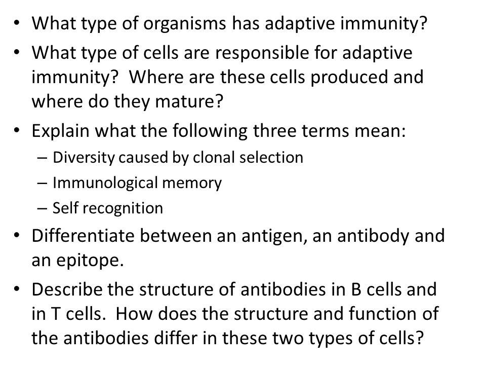What type of organisms has adaptive immunity? What type of cells are responsible for adaptive immunity? Where are these cells produced and where do th