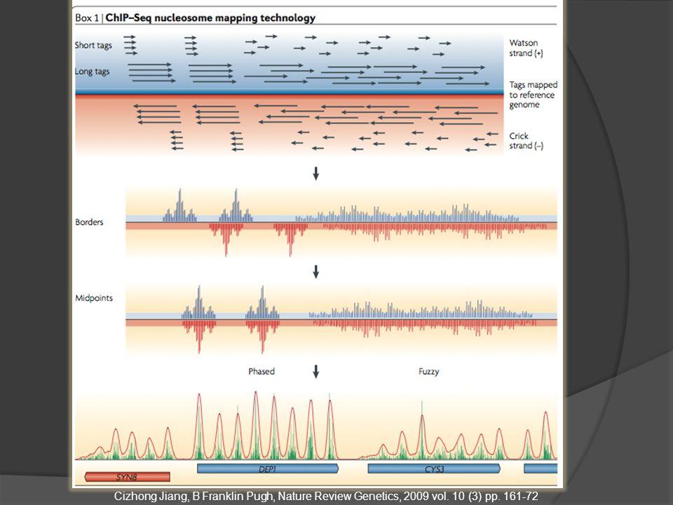 Cizhong Jiang, B Franklin Pugh, Nature Review Genetics, 2009 vol. 10 (3) pp. 161-72