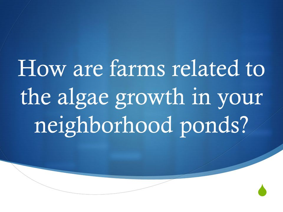  How are farms related to the algae growth in your neighborhood ponds?