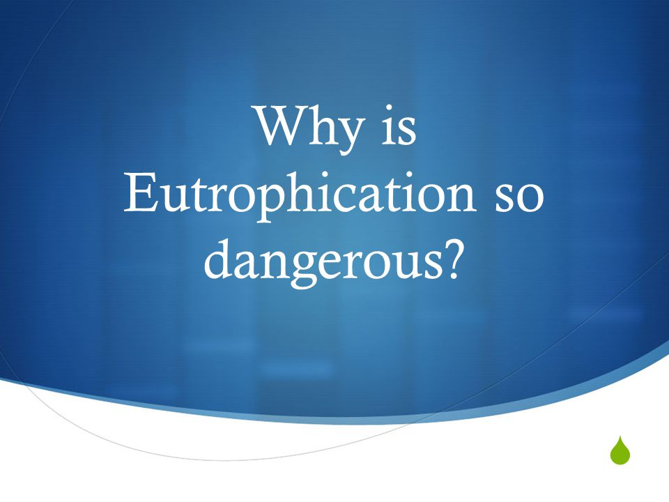 Why is Eutrophication so dangerous?