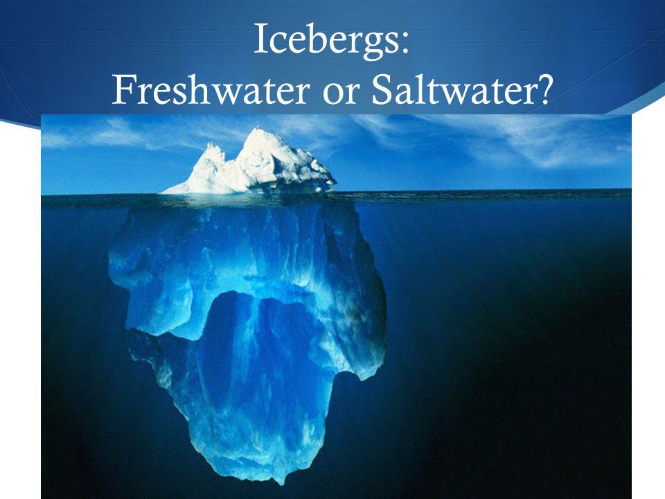 Icebergs: Freshwater or Saltwater