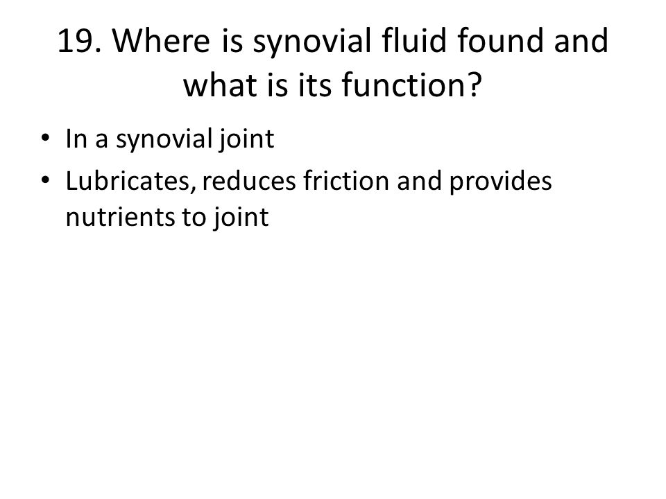 19.Where is synovial fluid found and what is its function.