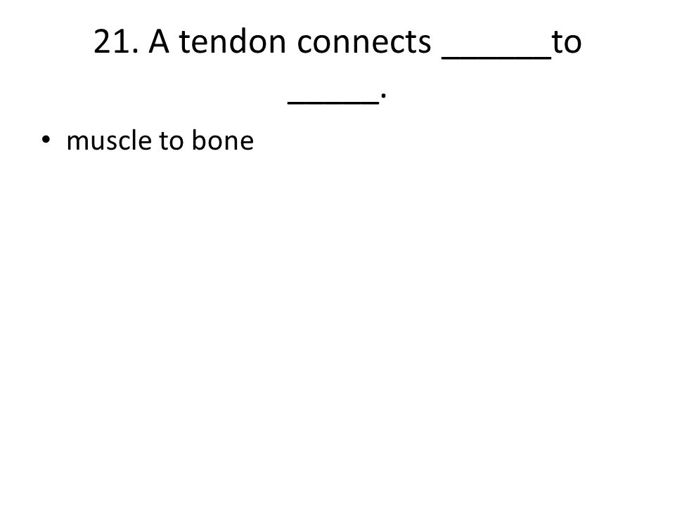 21. A tendon connects ______to _____. muscle to bone
