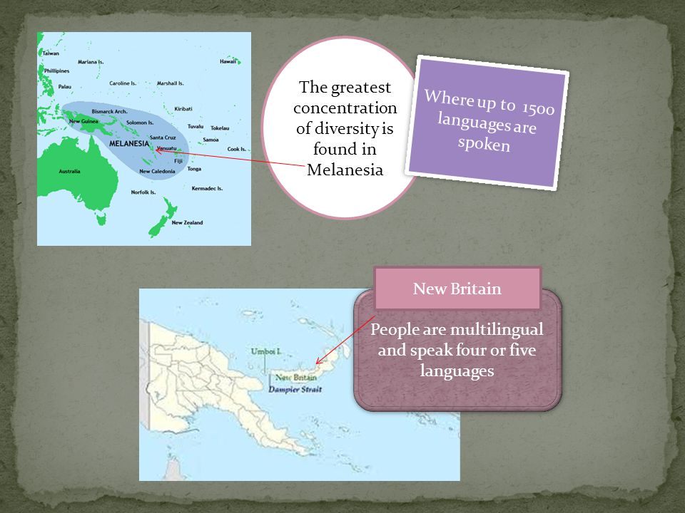 The greatest concentration of diversity is found in Melanesia Where up to 1500 languages are spoken People are multilingual and speak four or five languages New Britain
