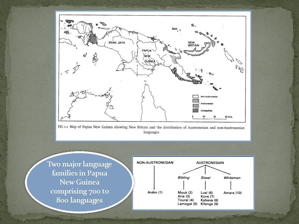 Two major language families in Papua New Guinea comprising 700 to 800 languages