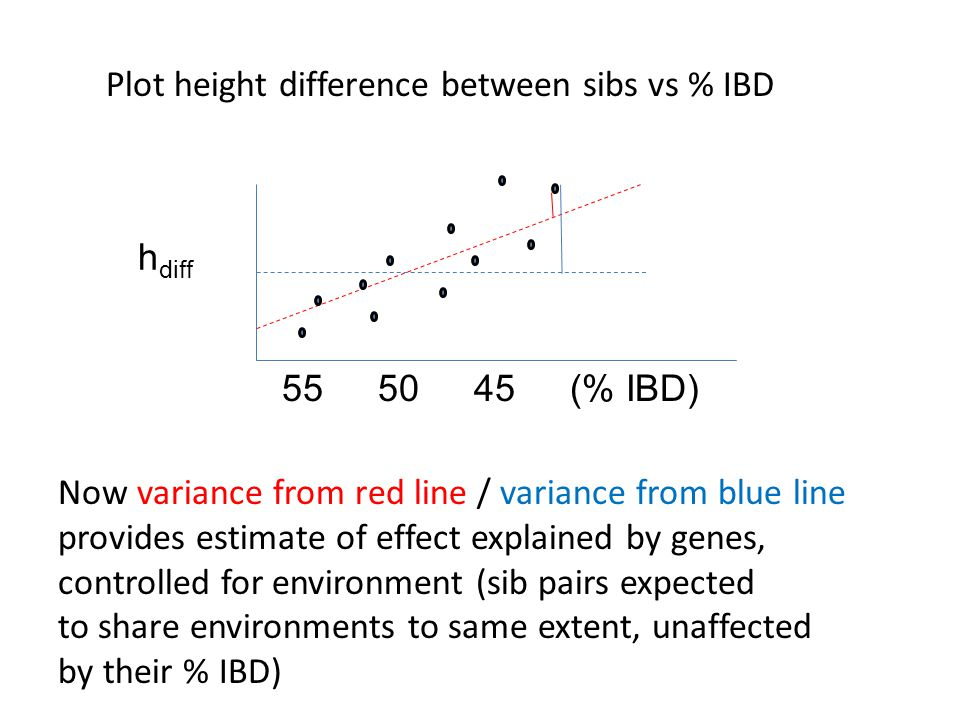 Plot height difference between sibs vs % IBD h diff 55 5045(% IBD) Now variance from red line / variance from blue line provides estimate of effect explained by genes, controlled for environment (sib pairs expected to share environments to same extent, unaffected by their % IBD)