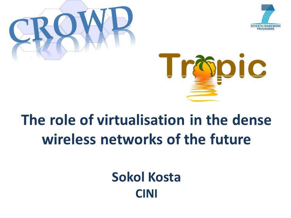 Distributed Computing, Storage, and Radio Resource Allocation over Cooperative Femtocells