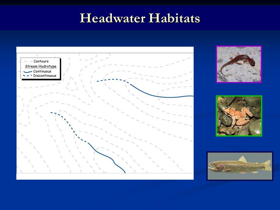 Headwater Habitats