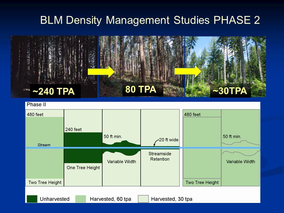 BLM Density Management Studies PHASE 2 80 TPA ~240 TPA ~30TPA