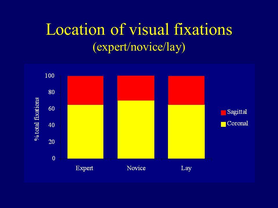 Location of visual fixations (expert/novice/lay)