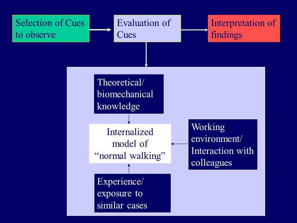 Selection of Cues to observe Evaluation of Cues Interpretation of findings Theoretical/ biomechanical knowledge Internalized model of normal walking Working environment/ Interaction with colleagues Experience/ exposure to similar cases