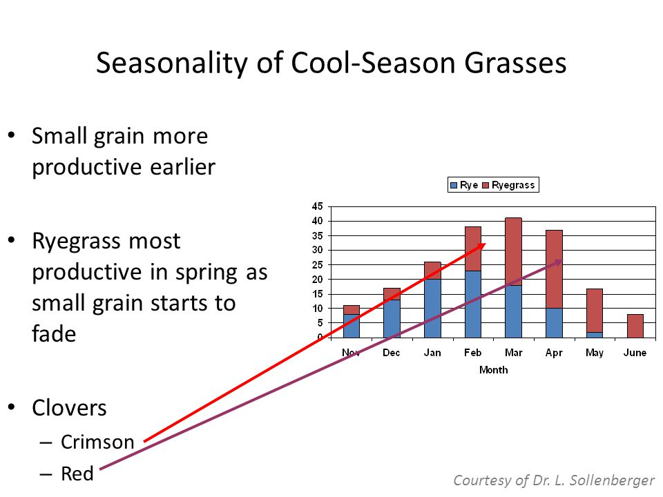 Seasonality of Cool-Season Grasses Small grain more productive earlier Ryegrass most productive in spring as small grain starts to fade Clovers – Crimson – Red Courtesy of Dr.