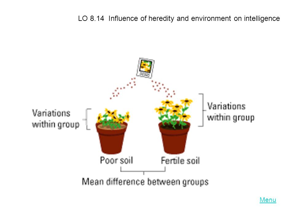 Menu LO 8.14 Influence of heredity and environment on intelligence