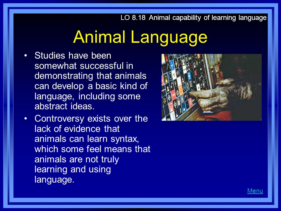 Animal Language Studies have been somewhat successful in demonstrating that animals can develop a basic kind of language, including some abstract idea