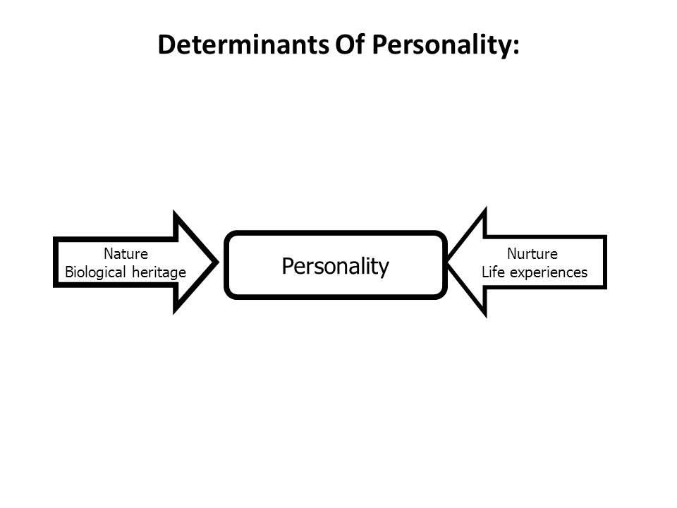 Determinants Of Personality: Personality Nature Biological heritage Nurture Life experiences