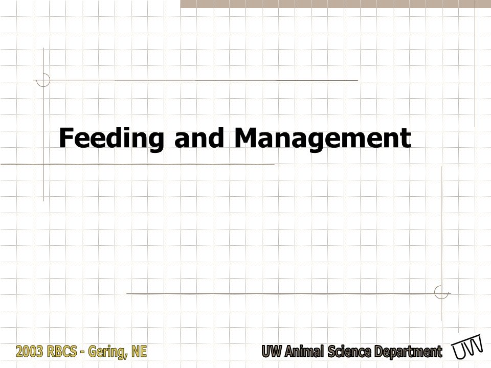 Feeding and Management